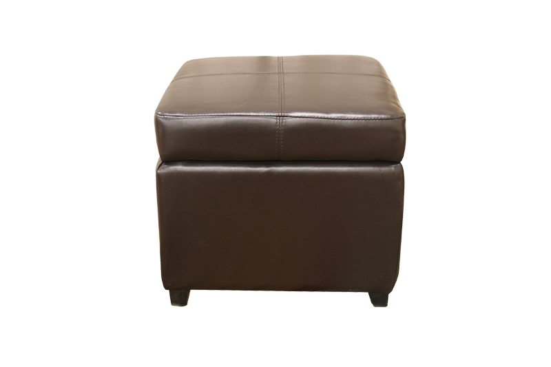 Superieur Pandora Leather Storage Ottoman In Dark Brown