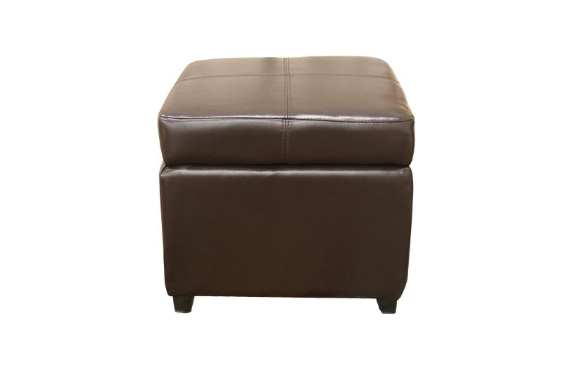 Pandora Leather Storage Ottoman In Dark Brown